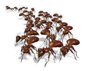Warning! An army of ants is headed for your picnic - 3D render.